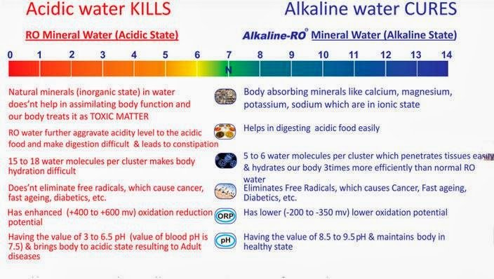 704x398xalkaline-water-health-benefits.jpg.pagespeed.ic.a5GBRQCxkN1TGLQQFL3h